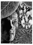Illustration, Dämonenland, Rebecca LaRoche, Der Dschungeldämon