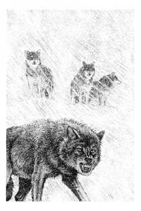 Fabian Fröhlich, Illustration, Wolfgang Hohlbein, Der Weg nach Thule