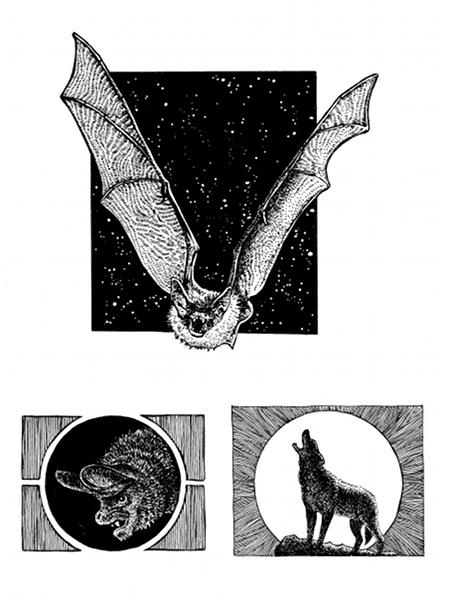 Fabian Fröhlich, Vampira, Kapitel-Vignetten