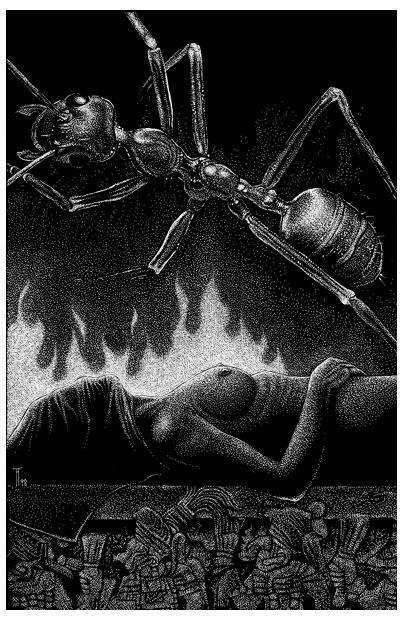 Fabian Fröhlich, Illustration, Alfred Eduard Frauenfeld, Angst