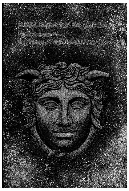 Fabian Fröhlich, Illustration, Peregrinus Tyss, Gorgyra
