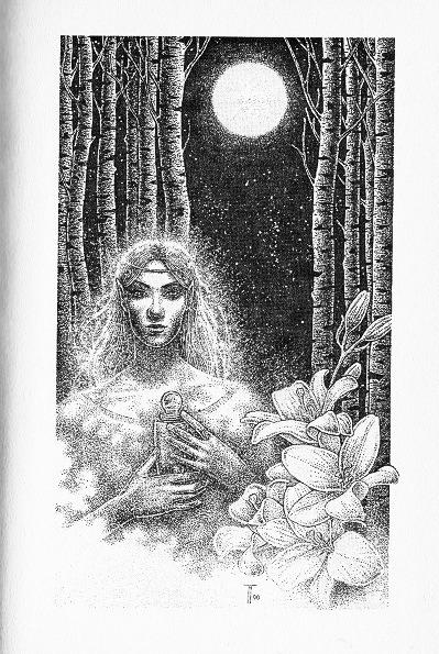 Fabian Fröhlich, Illustration, Hemut W. Pesch, Die Herren der Zeit